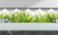 Fototapeta z trawą