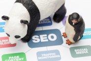 Algorytm Panda i Pingwin, pozycjonowanie