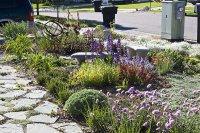 ogród projekt